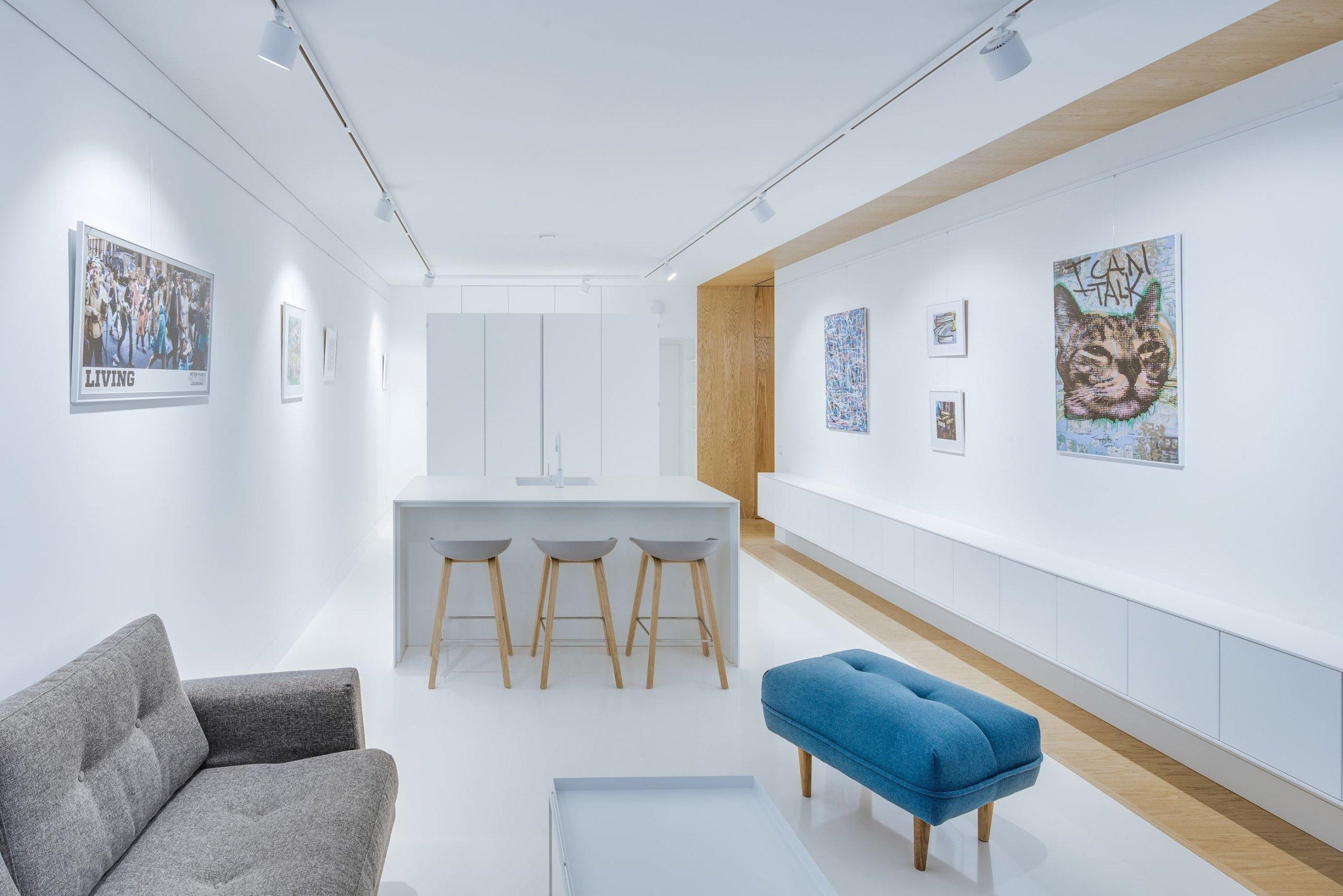 Mladý majitel litevského bytu ve Vilniusu měl jasný požadavek – chtěl takový prostor, kde by se na rozloze 50 metrů čtverečních skvěle vyjímala moderní umělecká díla z jeho bohaté sbírky.