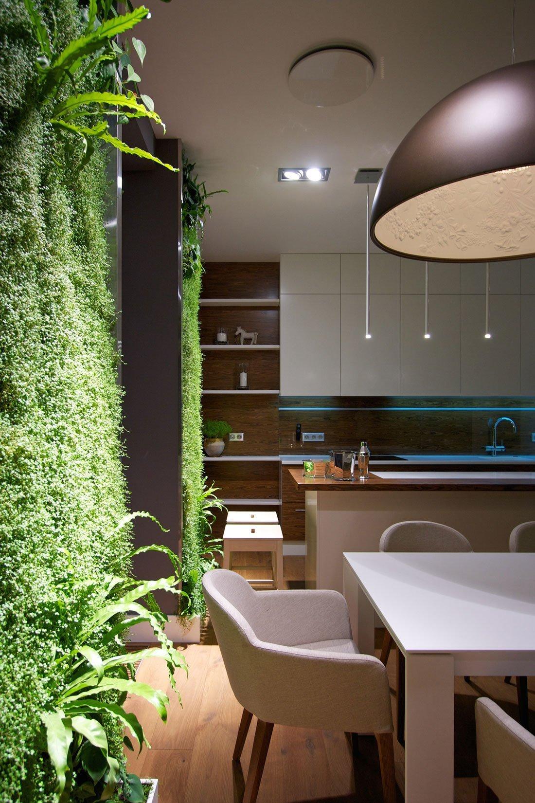Detail na rostliny a modré podsvícení v kuchyni.