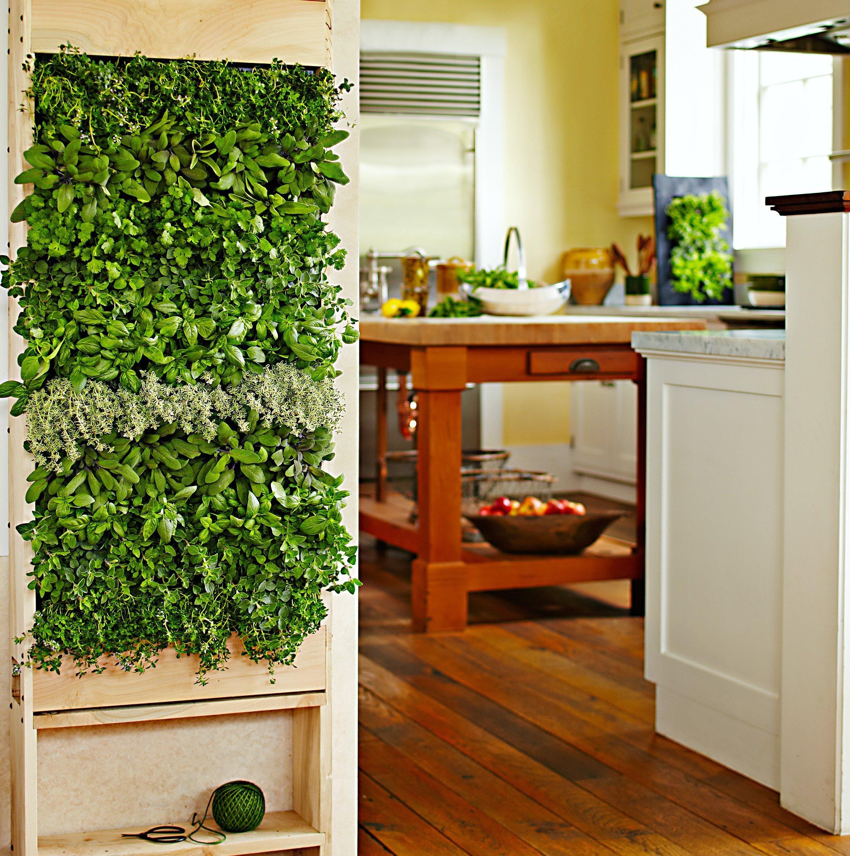 Mobilní zelená stěna může skrývat třeba kuchyňské bylinky.