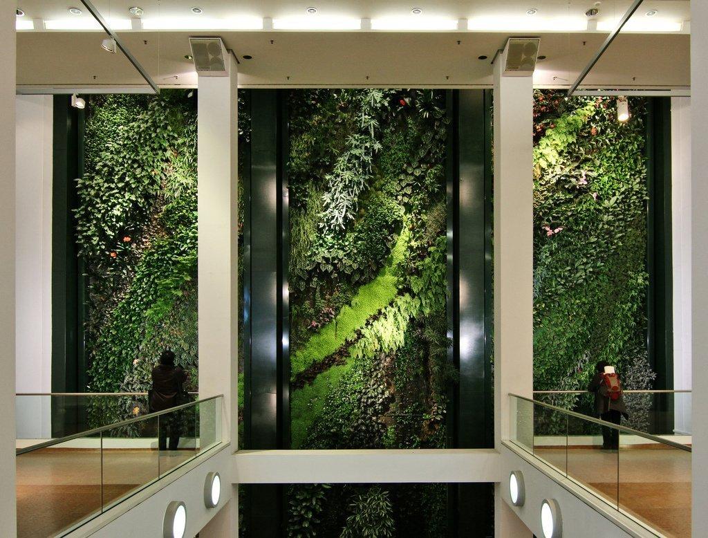 Vertikální zeď Patricka Blanca v Berlíně je vysázená přes tři patra a má údajně 157 druhů tropických rostlin.