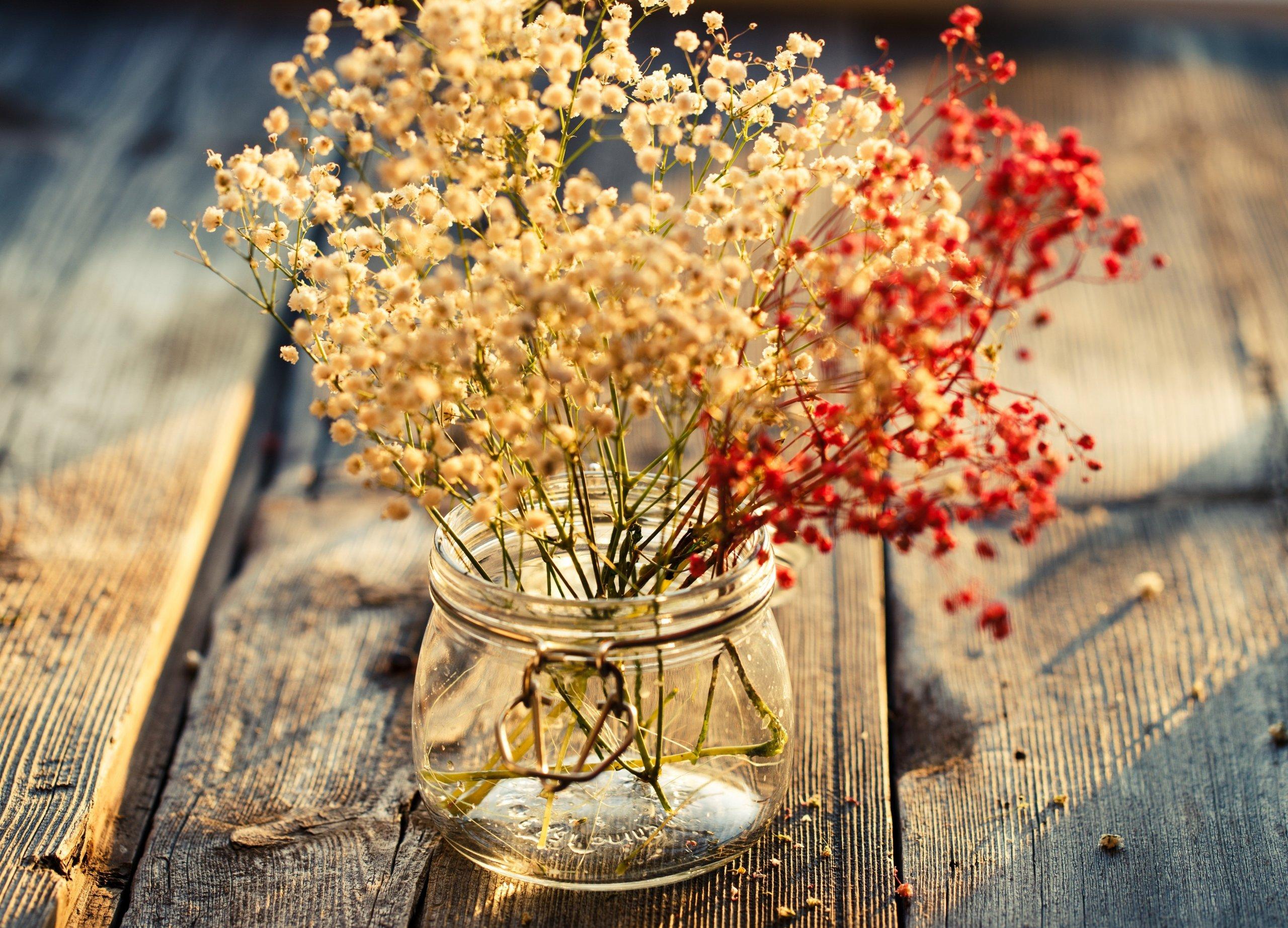 Brzy nastane období, kdy už v zahradě jen stěží najdeme nějakou kvetoucí rostlinu, kterou bychom mohli vyzdobit náš interiér. Nemusíme ale zoufat. Když během léta rostliny správně usušíme, můžeme se z nich těšit celou zimu. Jak tedy správně usušit rostliny?