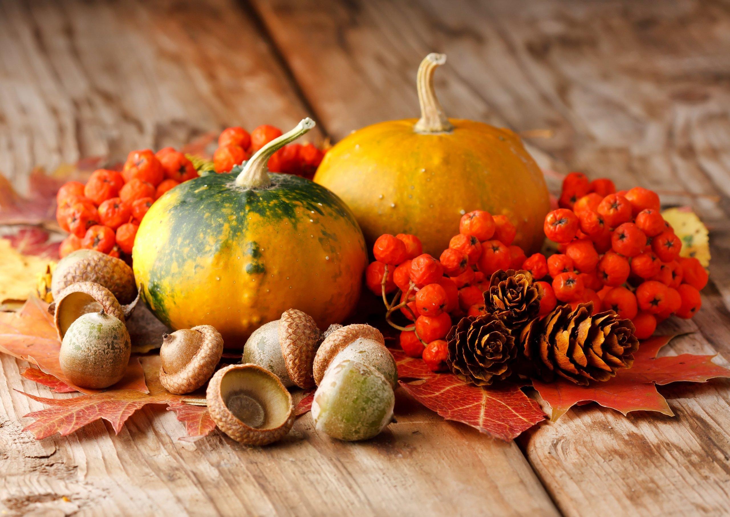 Už jste se také nechali zlákat a pořídili si domů nějakou tu podzimní dekoraci? Máme pro vás spoustu krásných tipů a inspirace na klasické i trochu netradiční ozdoby! Podzim září barvami, vyberte si, které z nich rozzáří váš domov.