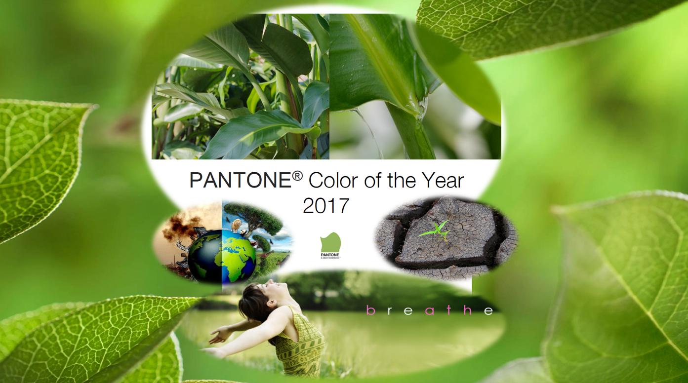 Greenery 15-0343! Zelená, svěží. V pořadí už osmnáctou, odborným týmem firmy PANTONE, vybranou barvou. Evropské veřejnosti představená v nádherném prostředí hotelu SOHO v Londýně.