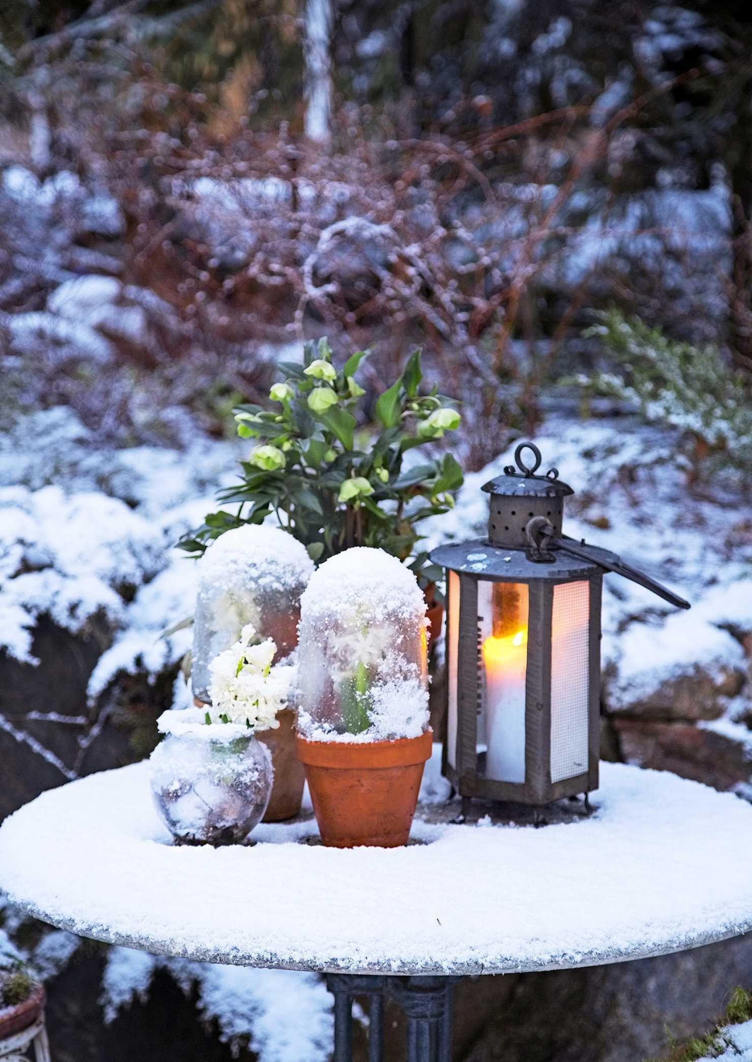 Vánoční inspirace a dekorace