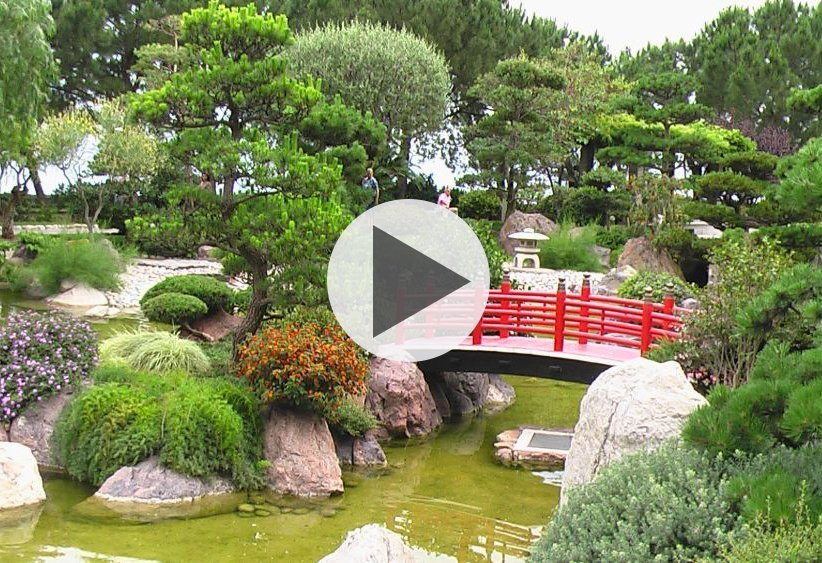 Magická síla japonské zahrady