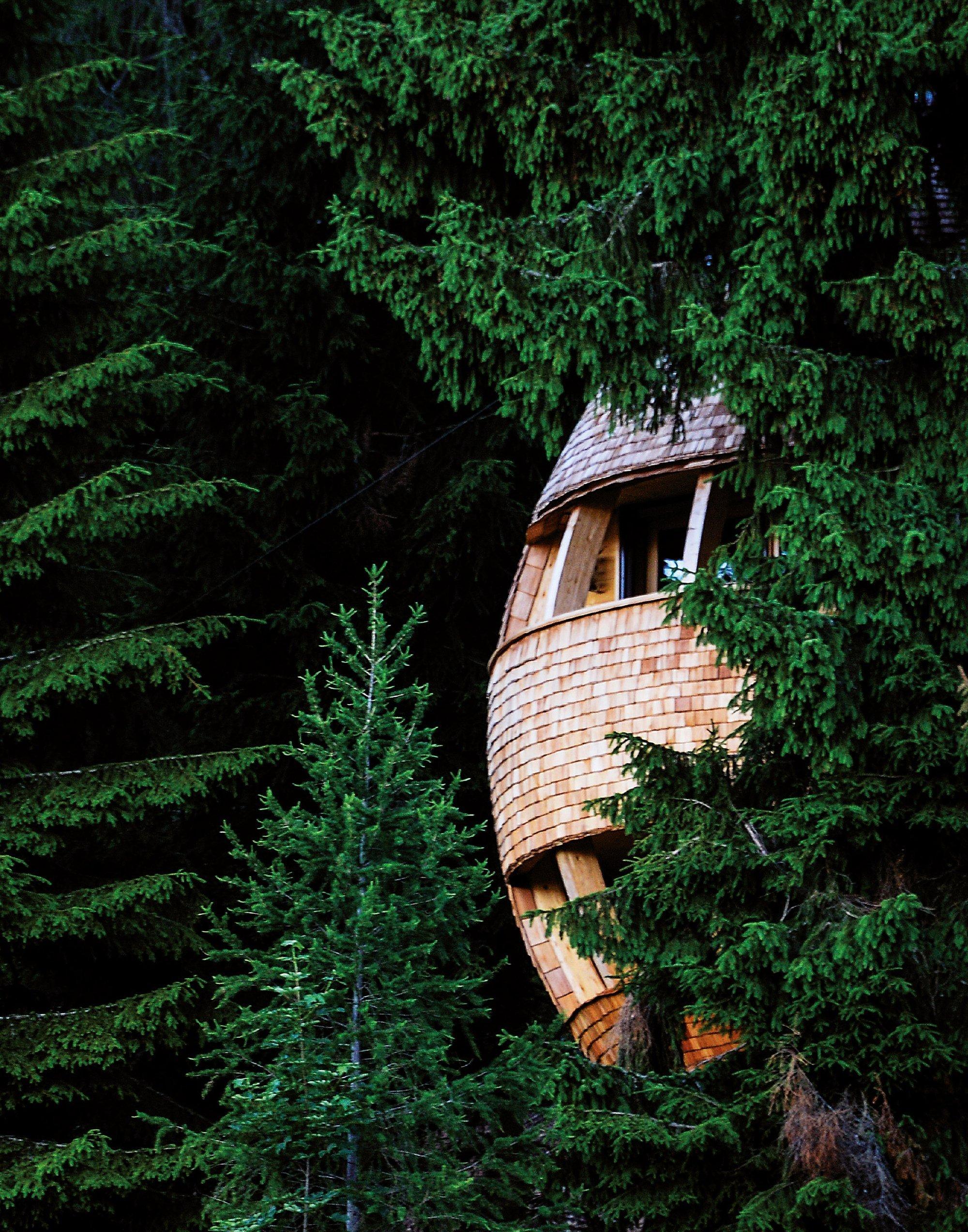 Jedinečný dům na stromě má blízko k přírodě
