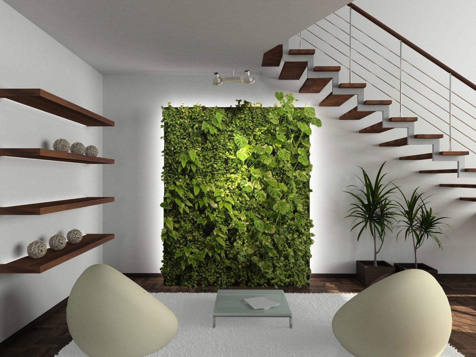 Kam v bytě umístit pokojové rostliny, aby se jim dařilo