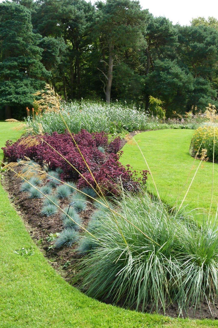 Díky travinám se v půdě drží vláha, kterou potřebují i náročnější rostliny.