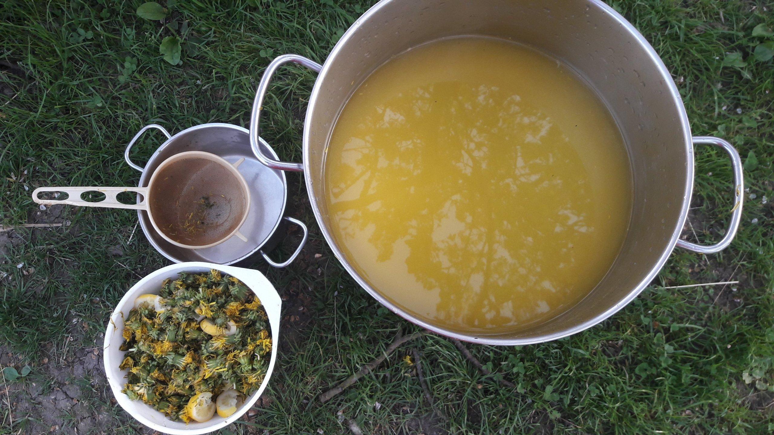 Pampeliškový med neboli zakonzervované jaro