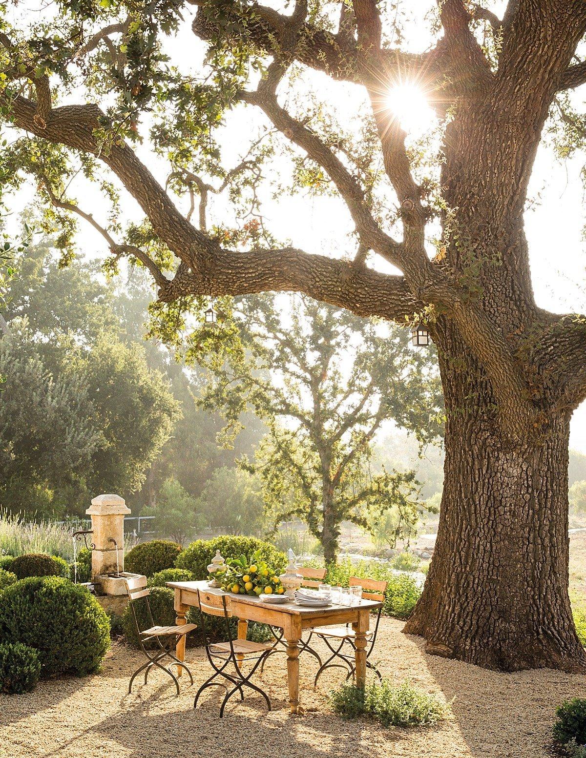 posezení ve stínu stromů