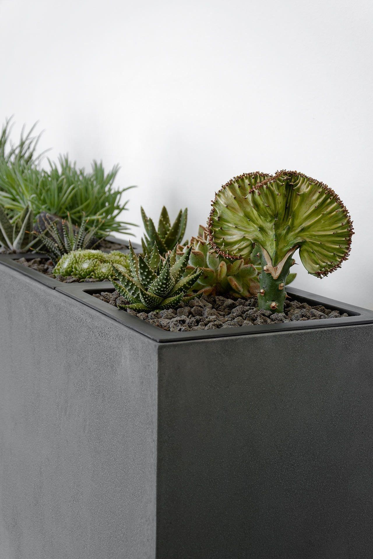 Květináče – čím dál častěji designová záležitost