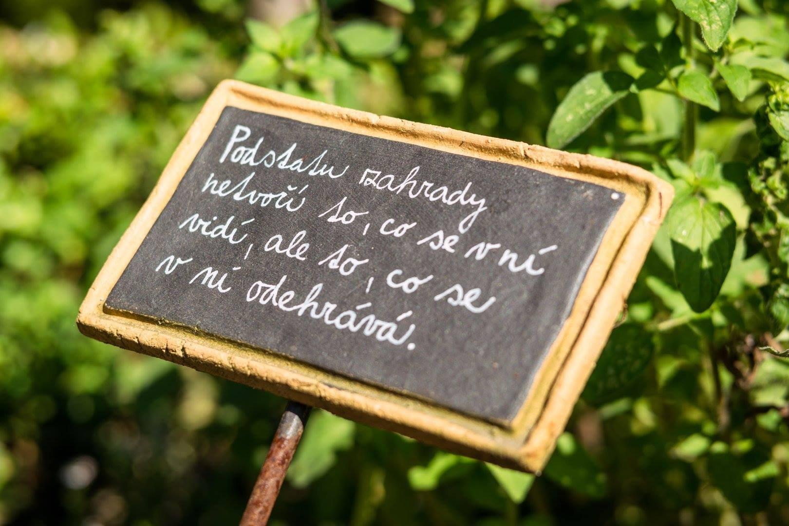 Jak na bylinkovou zahrádku? Klasicky, nebo od lesa?