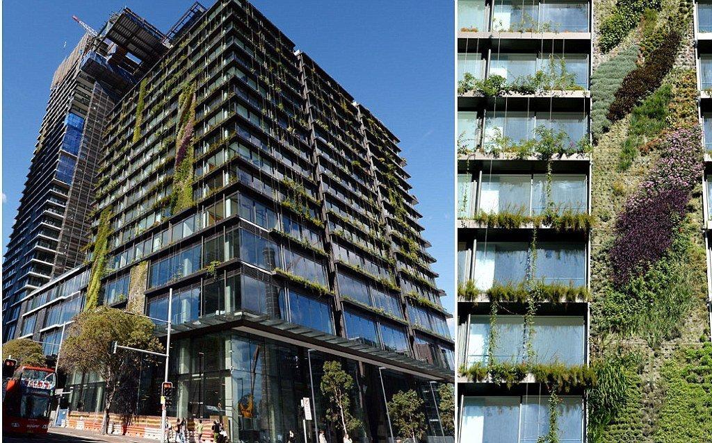 Vertikální zahrady jsou oblíbené hlavně u domů s nedostatkem prostoru