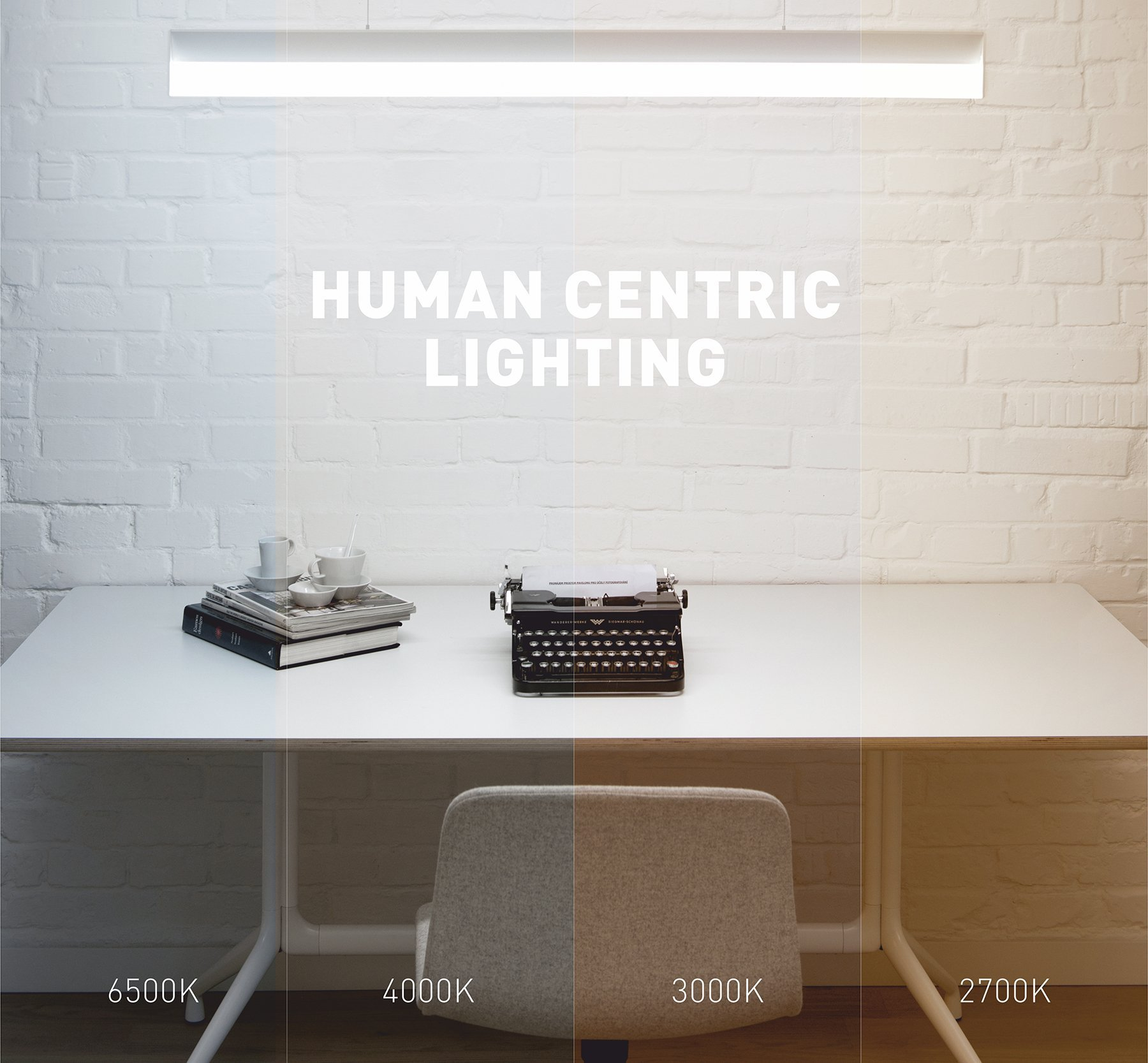 Významným prvkem každého prostoru je osvětlení. Avšak vybrat správné osvětlení není vůbec jednoduché, jak by se mohlo na první pohled zdát. Při výběru světla je nutné zaměřit pozornost na svítivost, životnost, barvu světla, náběh na plný světelný tok, v neposlední řadě také na energetickou úspornost a samozřejmě samotné svítidlo jako takové.