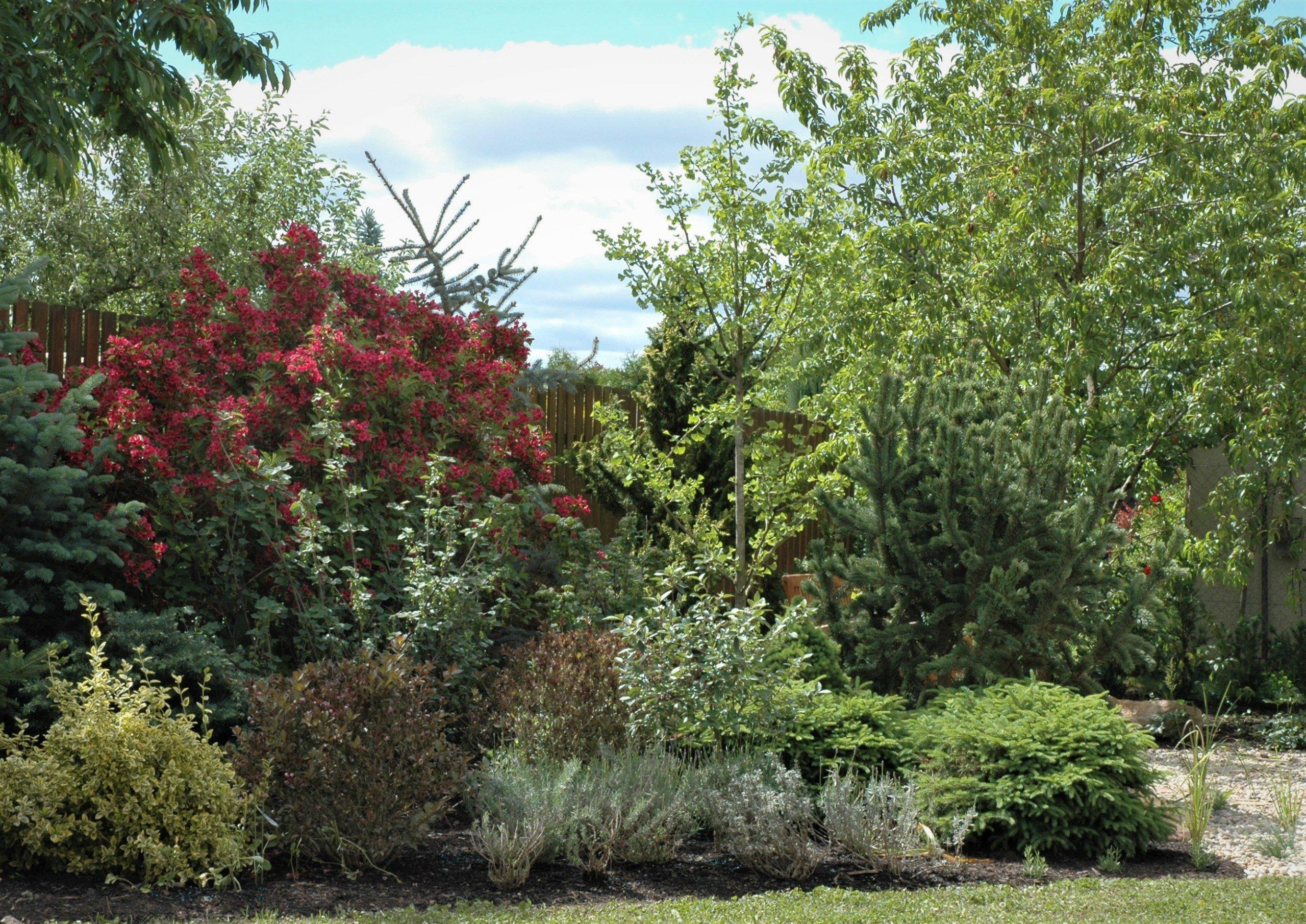 Rekonstrukce zahrady v Klánovicích    Realizace: jaro 2007   …