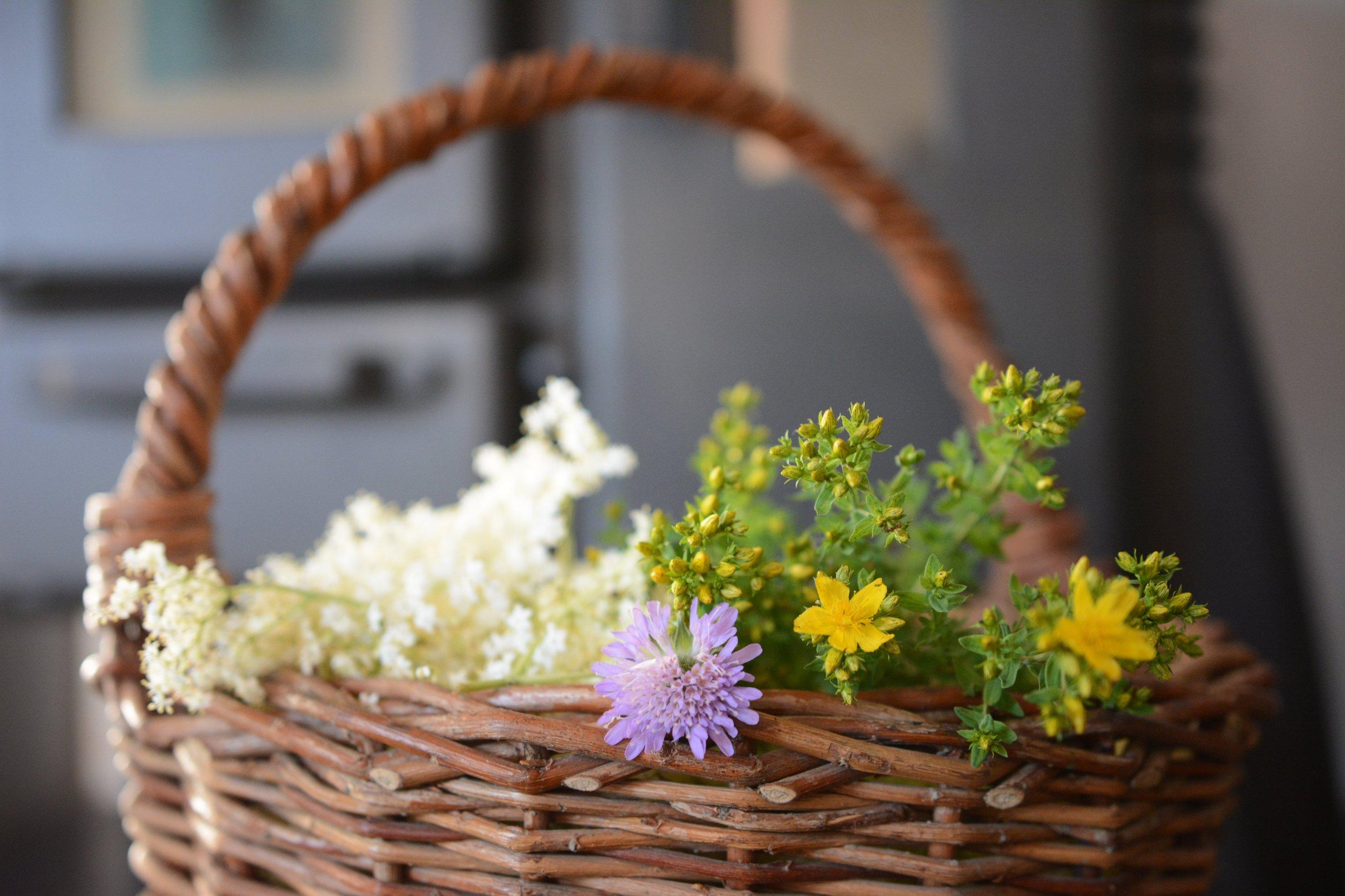 Kamna jsou ideální k sušení bylin a hub.