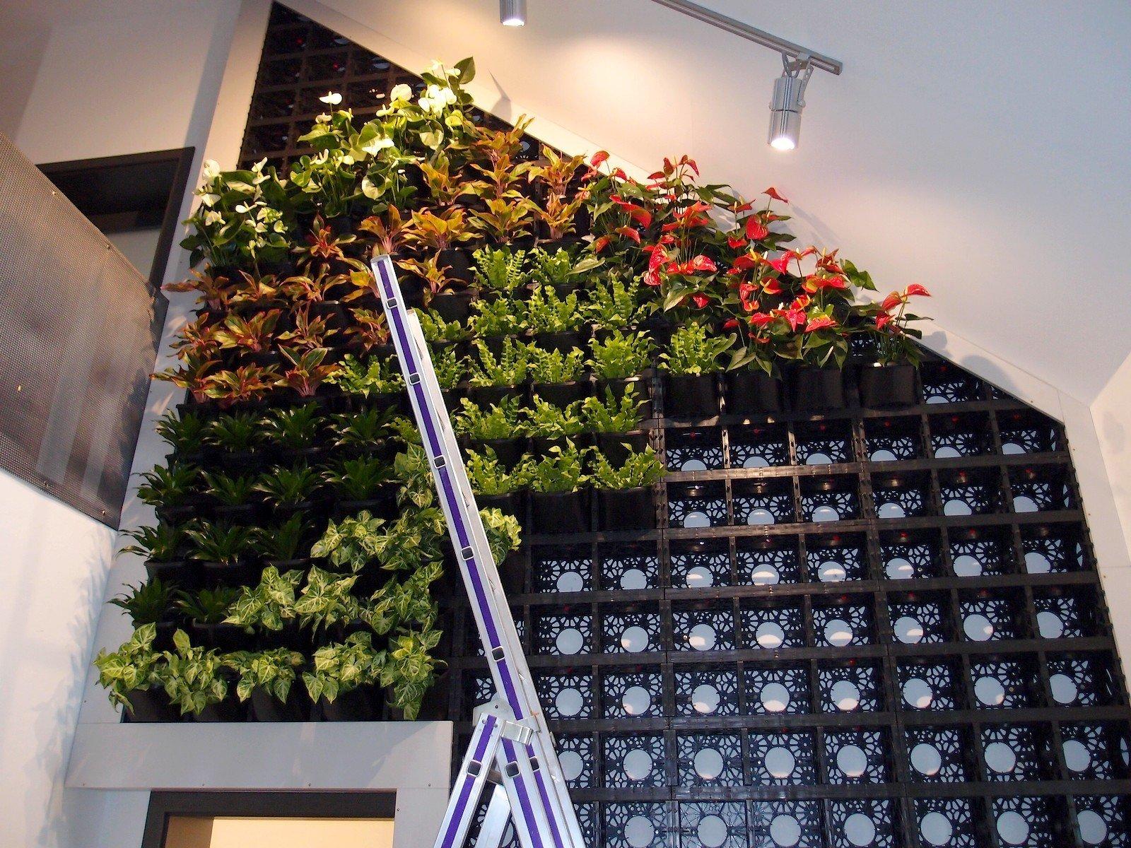 Design zelené stěny je možné kdykoliv jednoduše změnit.
