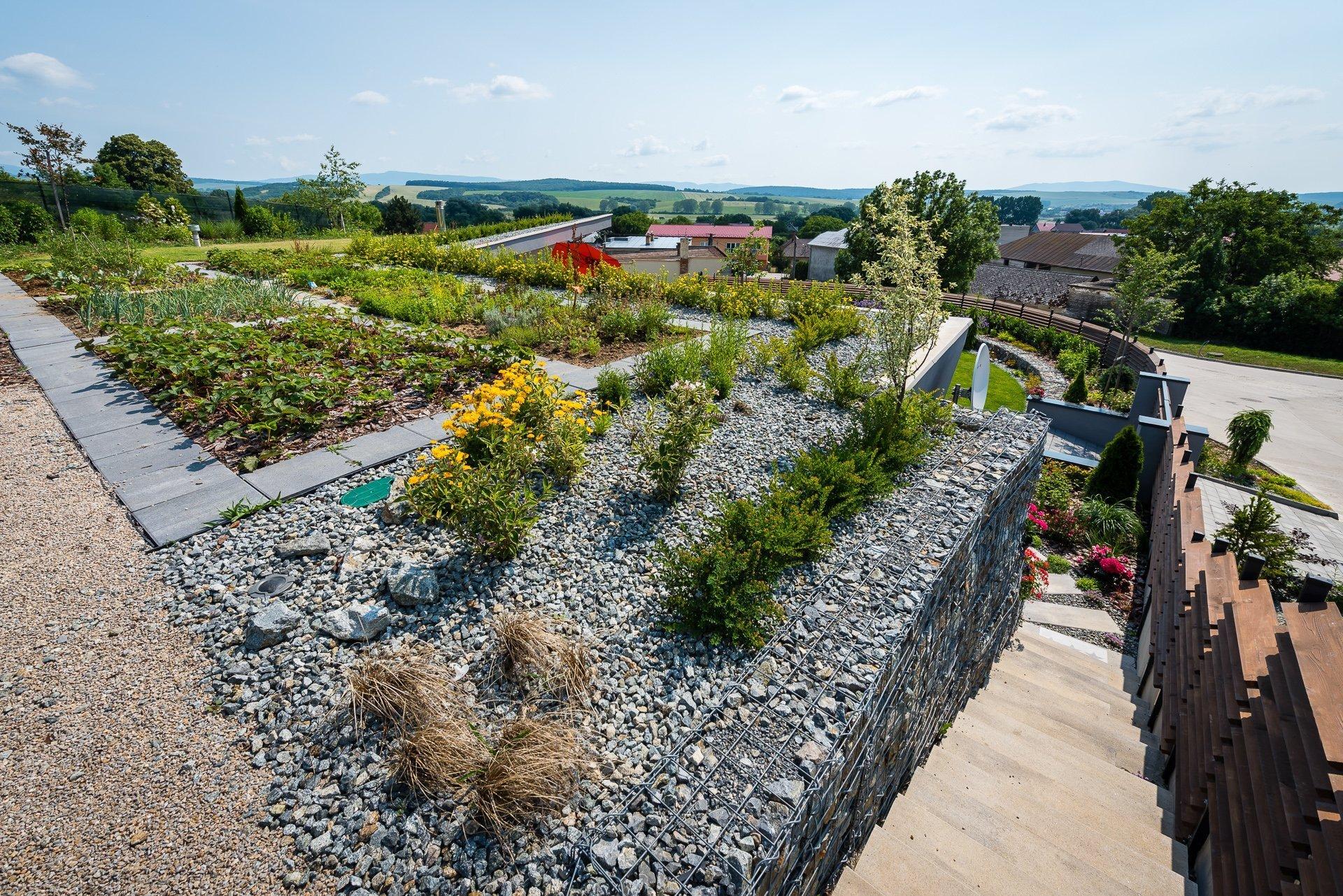 Střecha krtkodomu poskytuje 1/3 – 1/4 plochy pozemku v městské zástavbě na pěstování. Kromě jahod se potešíte I hrachu nebo rajčatúm. Dalším rokem se chystá majitel rozšířit zahradu na střeše. Ješte mu chybí paprika.