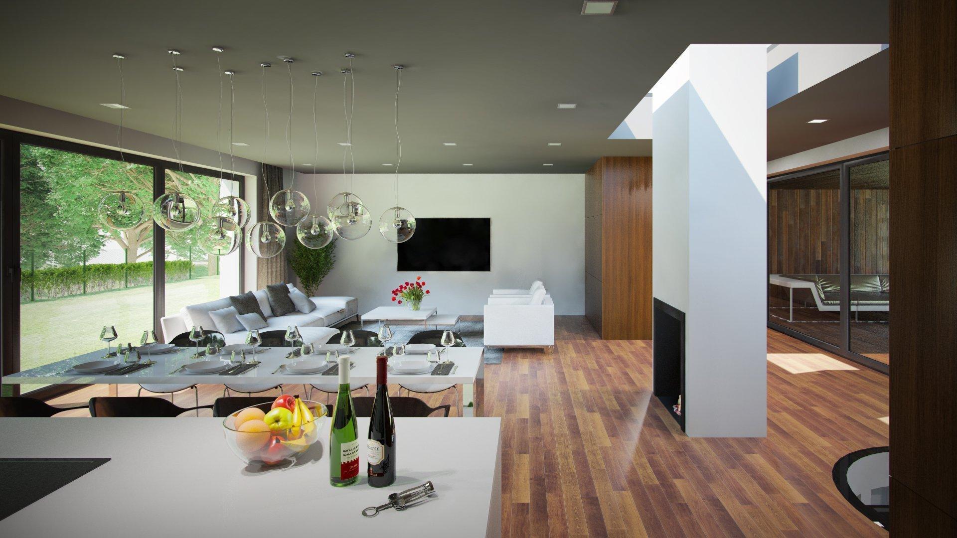 Architektonická studie rodinného domu.