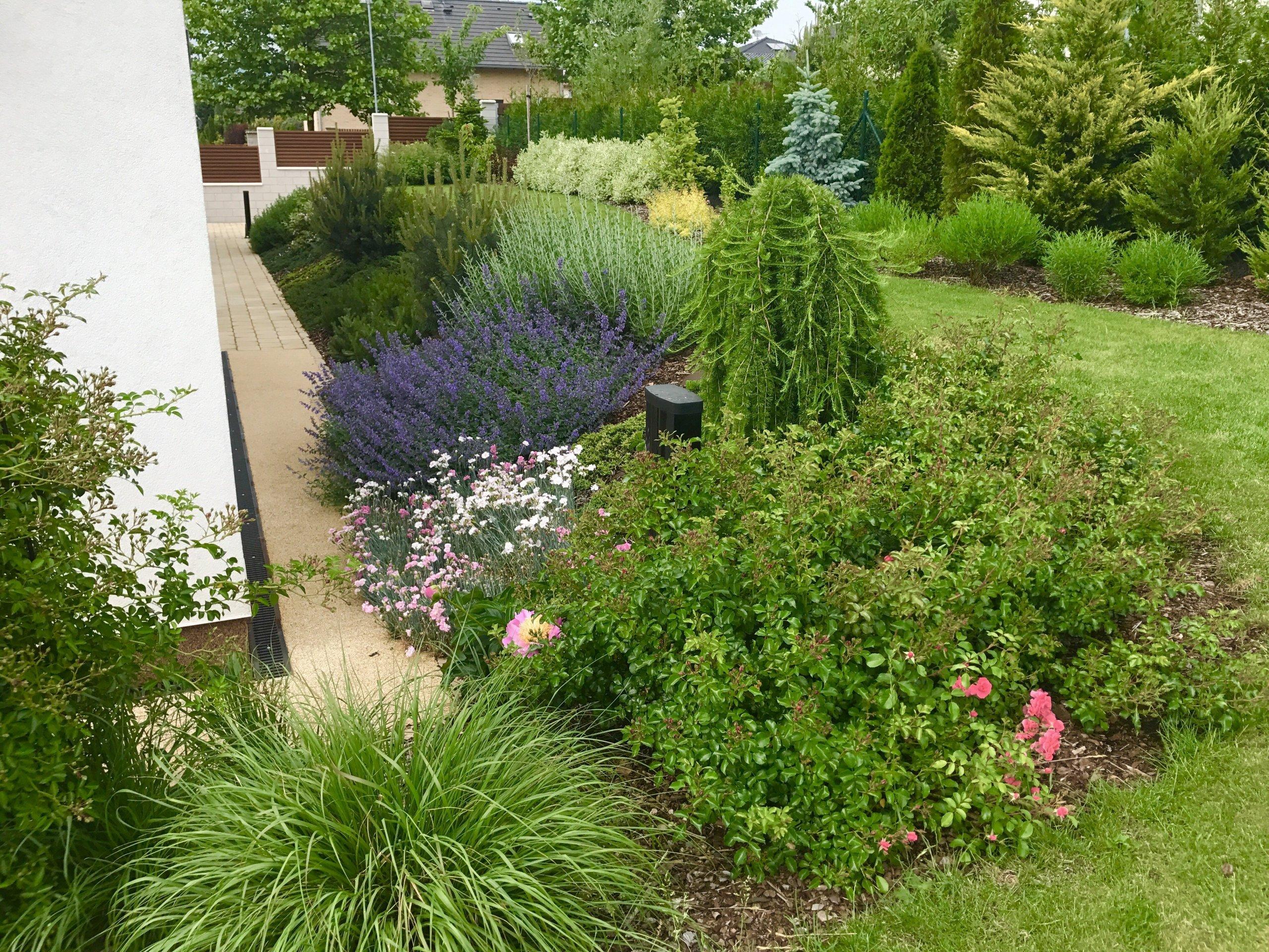Třetím rokem už zahrada roste do krásy