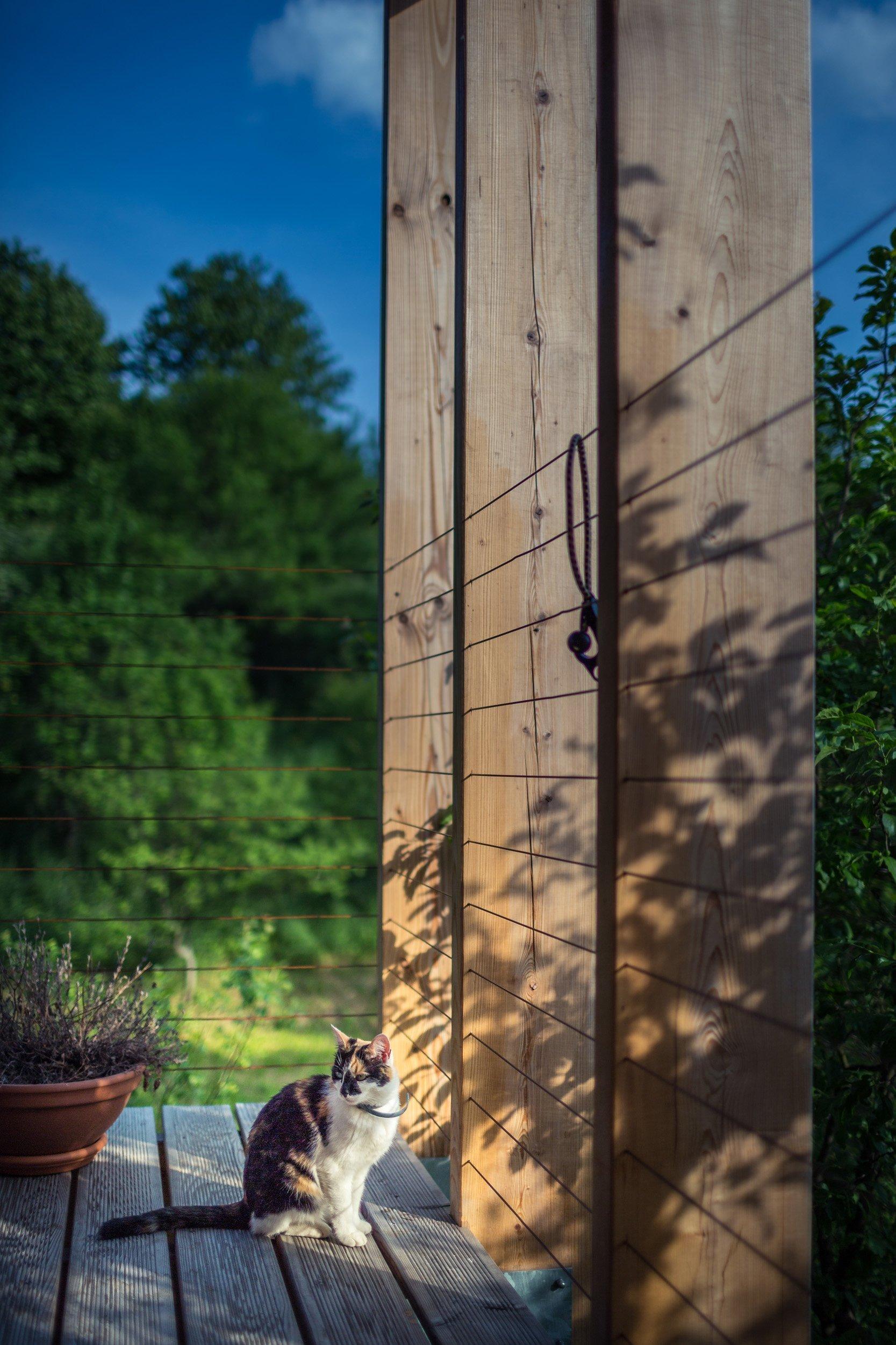 Rekonstrukce rodinného domu, Nástavba dřevostavbou a kompletní úpravy interiéru.