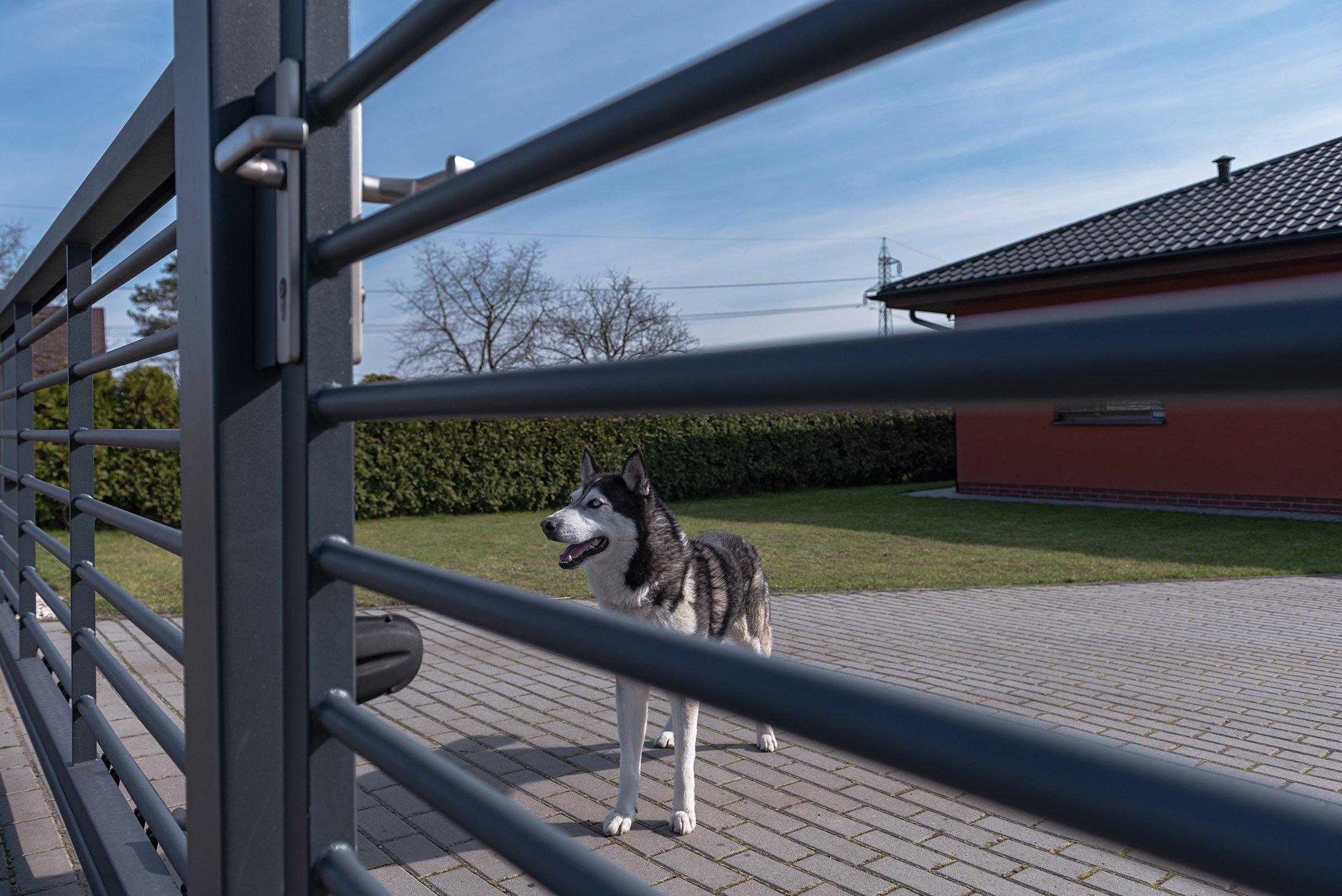 Kovový plot v kombinaci gabiony nezklame (rodinný dům, Orlová)  Současná podobamoderního bungalovu pro mladou rodinu. Takový trend dnešní doby. Majitel…