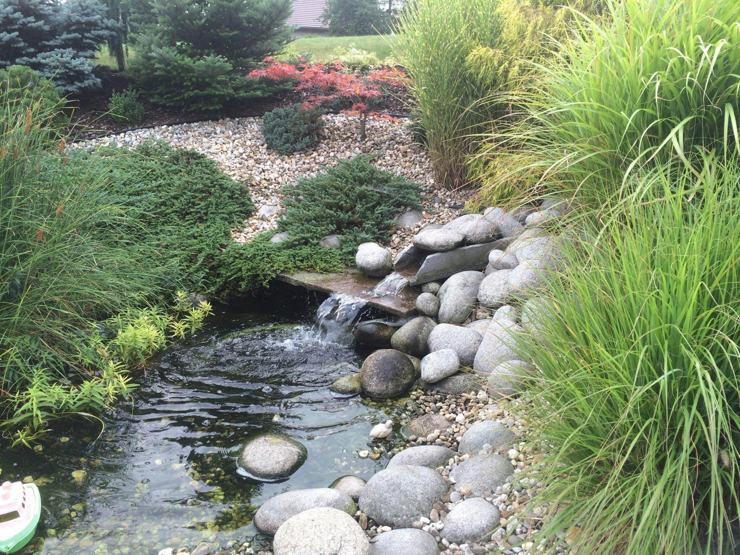 Zahrada u RD s malým jezírkem, provádíme zde i pravidelnou údržbu