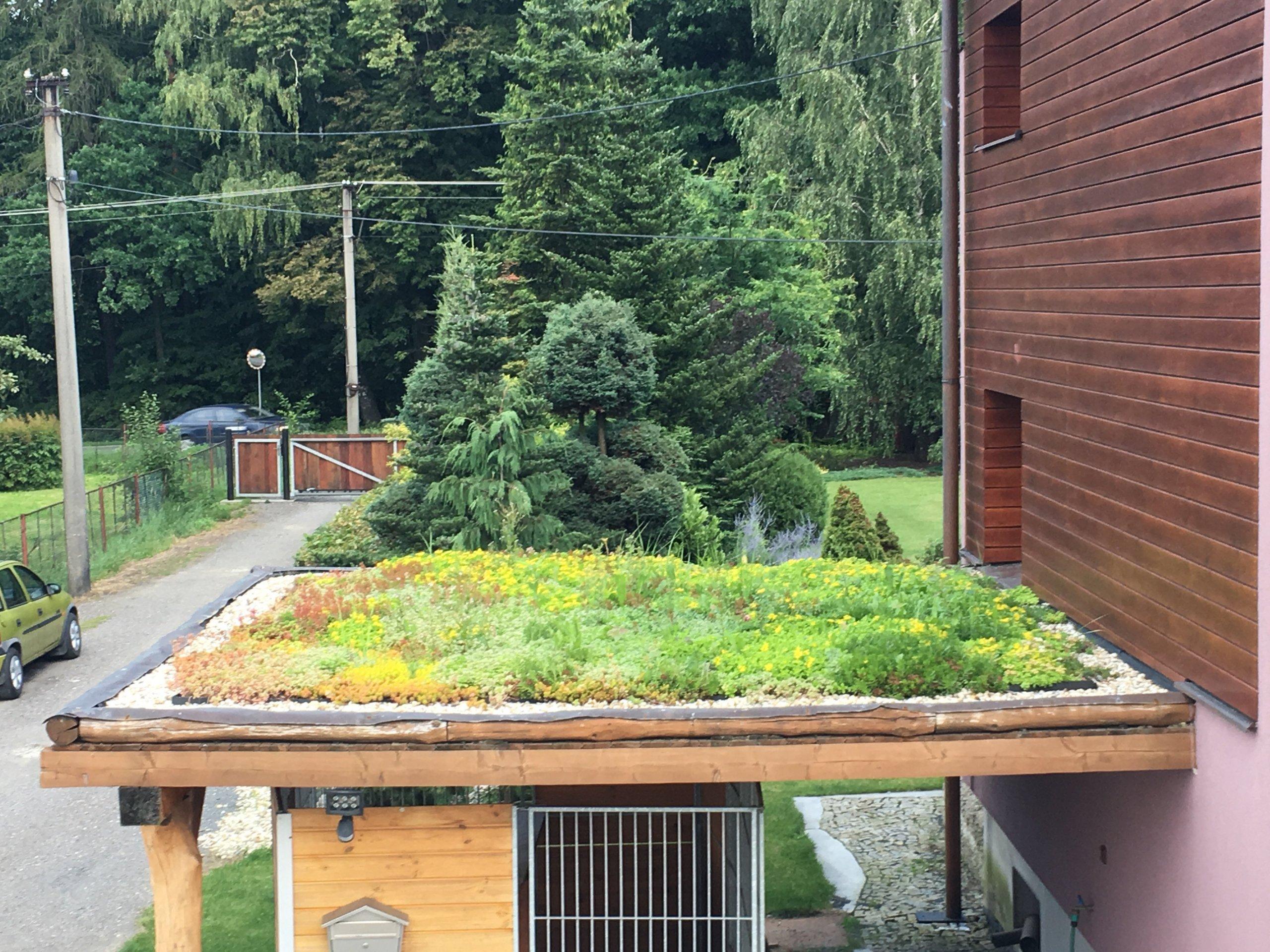 Zelená střecha na RD a přístavcích, výborné tepelné vlastnosti, úžasný vzhled