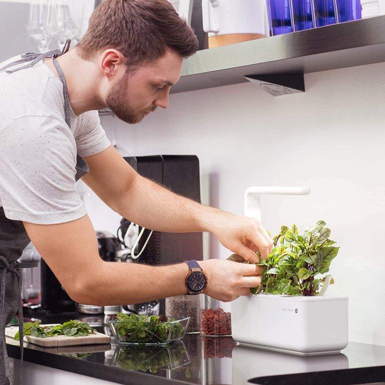 Hydroponická zahrádka umožňuje pěstování zeleniny a bylinek v průběhu celého roku