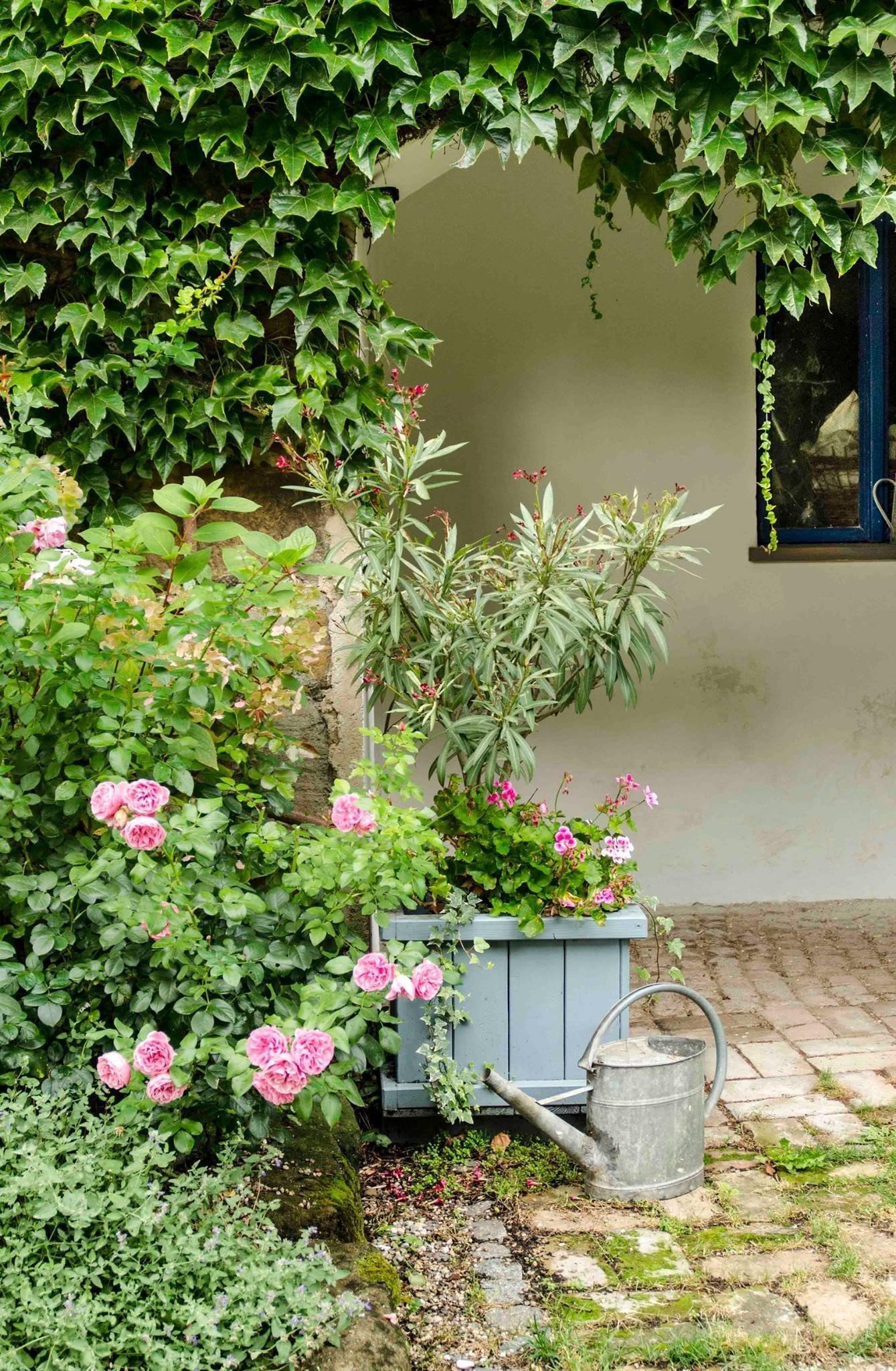 Poměřovat kvalitu je přirozenou lidskou vlastností. I tvorba v zahrad má v České republice svého Českého lva či Zlatého slavíka. Je jím soutěž Zahrada roku, kterou vyhlásil loni Svaz zakládání a údržby zeleně již po čtrnácté