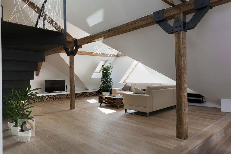 Moderní podkrovní byt