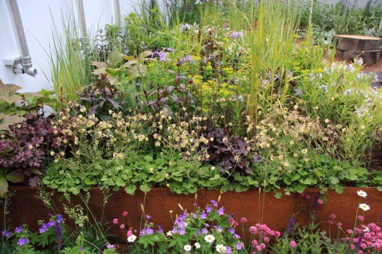Vyvýšené záhony ocení i milovníci okrasných rostlin