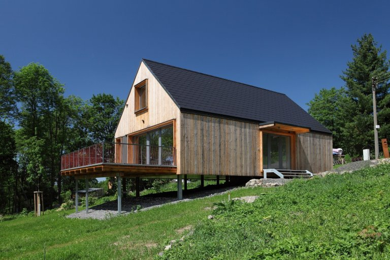 Concept House - Pulečný