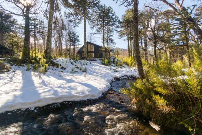 Chata uprostřed zasněženého lesa