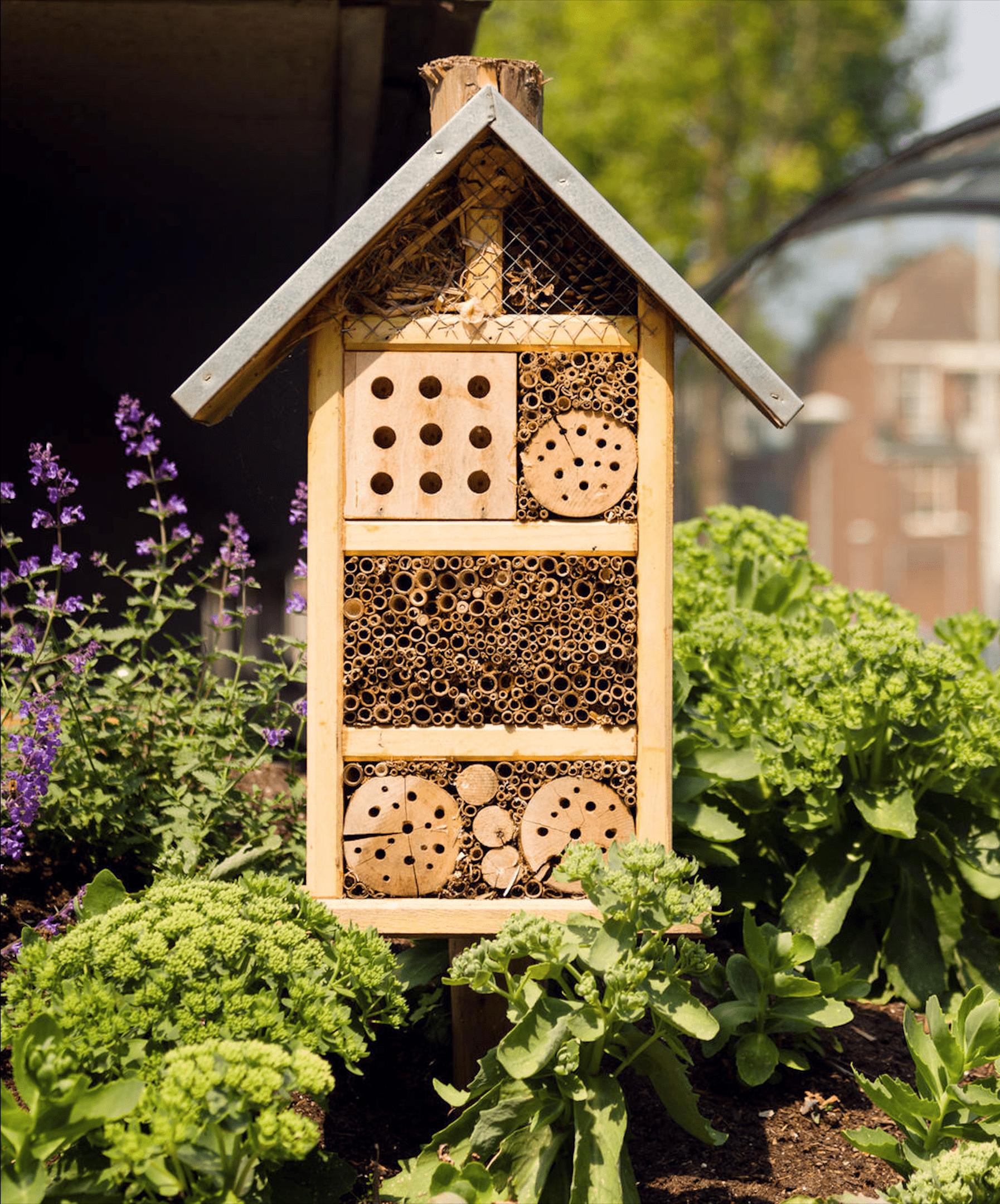V současné krajině čím dál tím více plundrované technologickým pokrokem ubývá celé řady živočichů včetně hmyzu. Pokud patříte mezi přátele přírody a chcete si na zahrádku nastěhovat užitečné pomocníky, postavte jim hmyzí hotel.