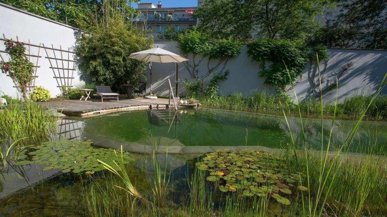 Přírodní koupací jezírko – kouzelný biotop bez chemie