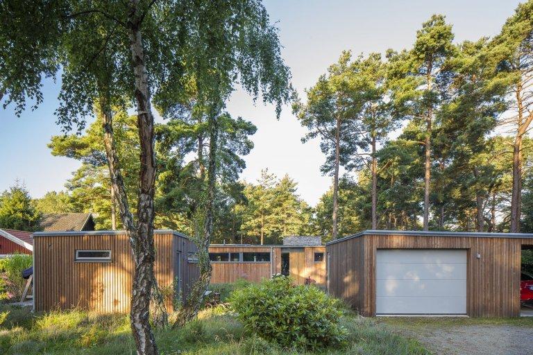 Přízemní dřevostavba mezi borovicemi a domem pro babičku