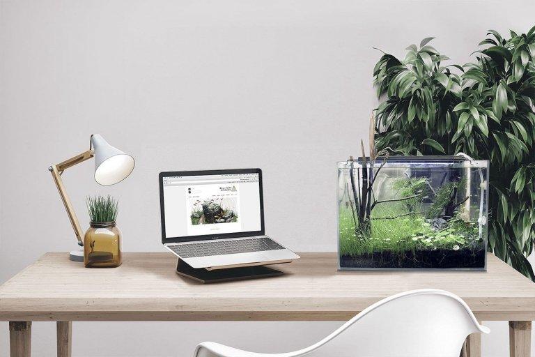 Nano akvárium, designový doplněk do vašeho bytu