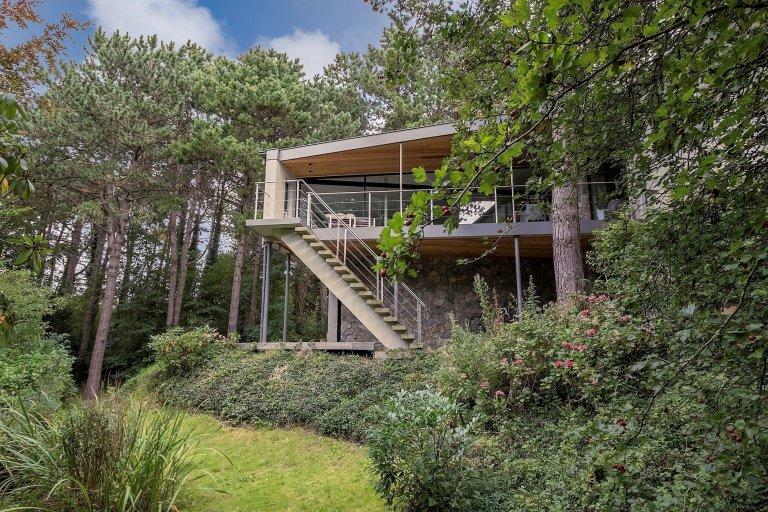 Dům obklopený lesem