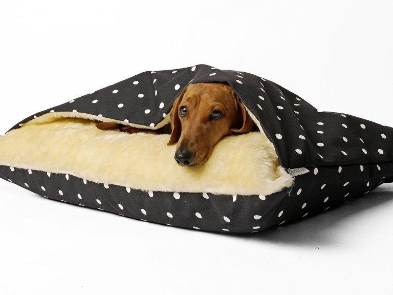 Nebudeme si nic nalhávat. Není žádný pes, který by neocenil pohodlnost lidské postele. Bohužel – do jedné postele se kromě vás, manžela a dětí pes už nevleze. Nehledě na to, že byste museli každý den převlékat všechny peřiny. Řešíte problém, jak vybrat ten nejlepší pelíšek pro svého čtyřnohého miláčka? My vám s tím pomůžeme.