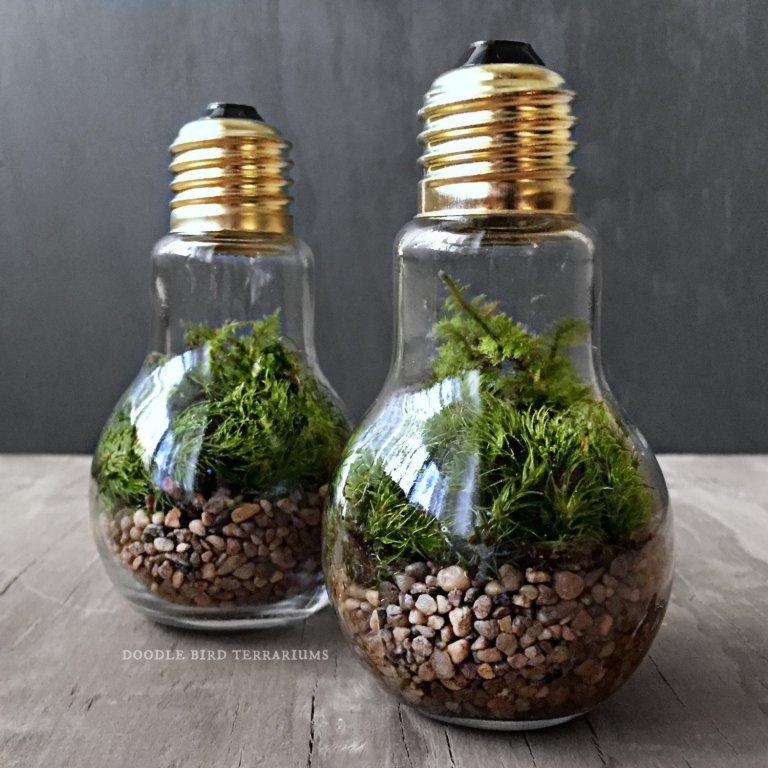 Čím dál více z nás se v poslední době zabývá o něco ekologičtějším způsobem života. Třídíme odpad, sázíme novou zeleň, jíme ekologicky. Tento způsob života můžeme začlenit i do našich interiérů v podobě malého mini lesíku, který nebude zabírat větší plochu než je jedna skleněná nádoba.