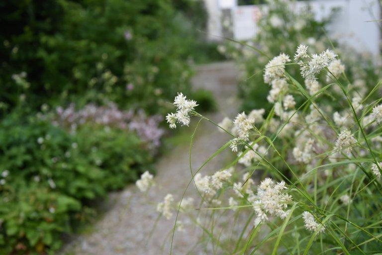 """Další zahradou ze """"série"""" přírodních zahrad je venkovská zahrada na Benešovsku.  Jak ji co nejlépe popsat?  Vzhled tohoto domu i zahrady pro…"""