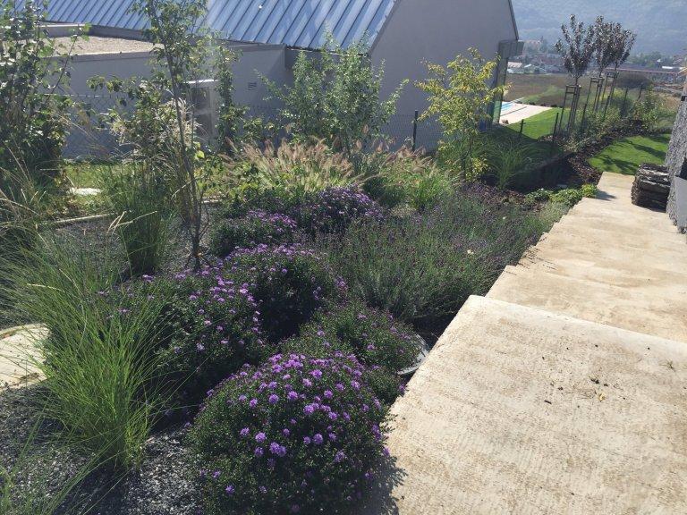 Okrasné traviny jsou stejně jako keře či květiny nezbytnou součástí zahradní kompozice a neměly by tedy chybět v žádné zahradě. Nevyžadují příliš péče a jsou…